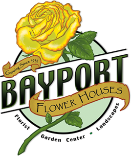 Bayport Flower – Shop